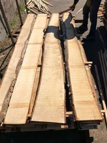 2018年7月供应桦木板材,毛边材无芯材起订量5柜