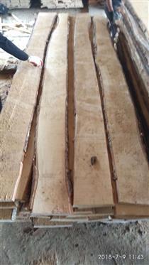 桦木毛边板材货源充足供货稳定价钱优惠到中国主要港口欢迎桦木经销商来电恰谈