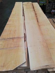 2018年9月俄罗斯工厂直销供应ABC级桦木板材毛边材,厚度24MM、43MM同53MM